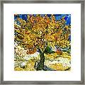 The Mulberry Tree After Van Gogh Framed Print