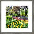 The Park At Post Office Square Framed Print