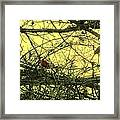 The Patch Up Framed Print