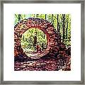 The Portal To Love Life Peace 1 Framed Print