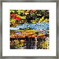 The Private Little Pond Framed Print