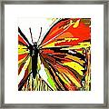 The Red Butterfly Framed Print