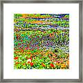 The Resort For Insects Framed Print