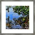 The Serenity Of Mind Framed Print