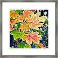 The Turning Leaves Framed Print