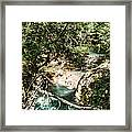 The Turquoise Waters Of The Forest River No2 Framed Print