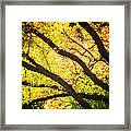 Then Autumn Arrives 03 Framed Print