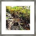 There Once Was A Garden That Lived In A Shoe Framed Print
