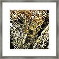 Thermal Waters Of Pamukkale Framed Print