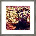 Thistles In A Summer Field Framed Print