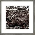Thoughtful Toad Framed Print