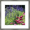 Three Great Colors Framed Print