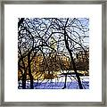 Through The Branches 3 - Central Park - Nyc Framed Print