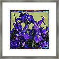 Tiffany Style Blue Iris Framed Print