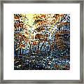 Tim's Autumn Trees Framed Print