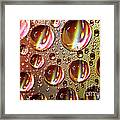 Tiny Water Beads And Spectrum Colors Framed Print