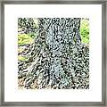 Tones And Textures Framed Print