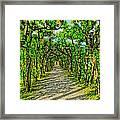 Tree Alley In Castle Park Framed Print