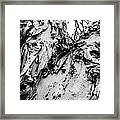 Tree Face No Color Framed Print by Lisa Cortez