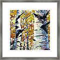 Tree Magic Framed Print