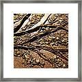 Tree Of Hope Detail Framed Print