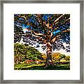 Tree Of Joy. Mauritius Framed Print