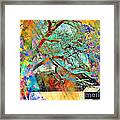 Tree Of Many Colors Framed Print