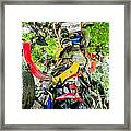 Tree Of Shame Near Tail Of Dragon Road In Nc Framed Print