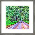 Tree Tunnel Kauai Framed Print