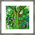 Tree With Owl Gnome And Mushroom Framed Print