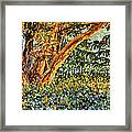 Trees At Sunset In Lafayette Park Framed Print