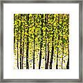 Trees At Twilight Xviii Framed Print