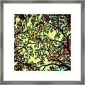 Trees Closing In Framed Print