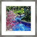 Tropical Garden Around Pool Framed Print