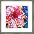 Tropical Hibiscus 4 Framed Print