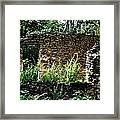 Troup Factory Framed Print