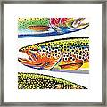 Trout Abstraction Framed Print