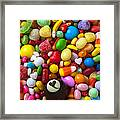 Truffle And Candy Framed Print