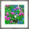 Tulips And Pansies And Grape Hyacinth By Lutheran Cathedral Of Helsinki-finland Framed Print