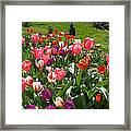 Tulips Garden Art Prints Colorful Spring Floral Framed Print