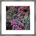 Twilight In The Courtyard Framed Print