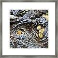 Under Roots Of Dead Tree Framed Print by Linda Phelps