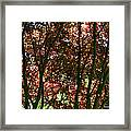 Under Your Protection Framed Print