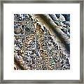 Pond Abstract Framed Print