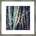 Urban Bamboo Framed Print