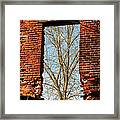 Urban Decay Framed Print by Olivier Le Queinec