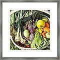 Veggie Delight Framed Print