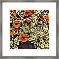 V.i. 0064 Framed Print