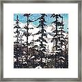 View From Twister Lift Framed Print
