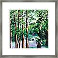 View Of Woodside Lake Framed Print